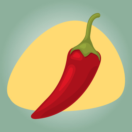 organic peppers sign: Vector illustration of  single spicy chili pepper Illustration