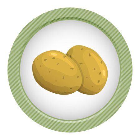 starch: vector illustration of potato an a white background