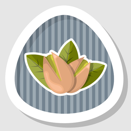 nutshell: Pistachios colorful icon. Vector illustration in cartoon style Illustration