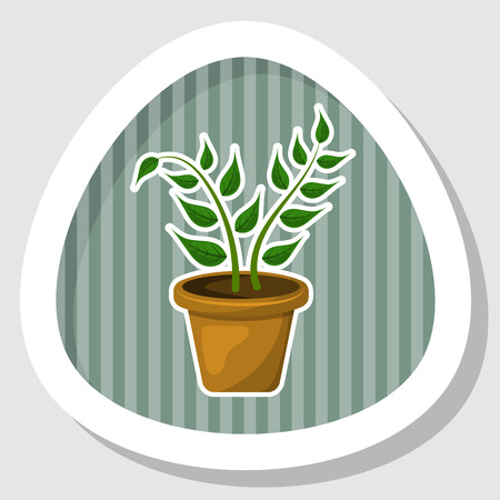 indoor: Indoor plant colorful icon. Vector illustration in cartoon style