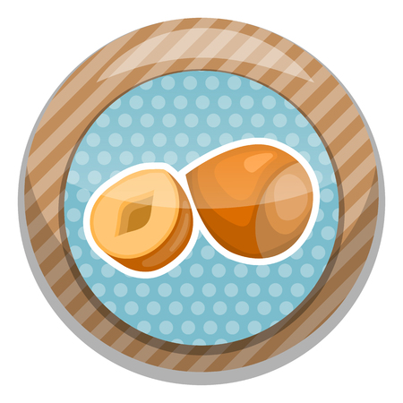 filberts: Hazelnut colorful icon. Vector illustration in cartoon style