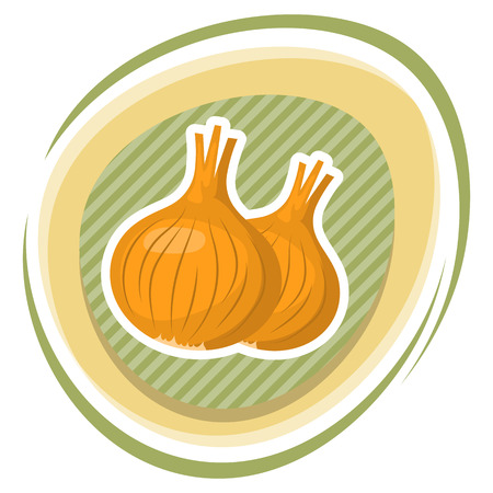 tuber: vector illustration of onion an a white background