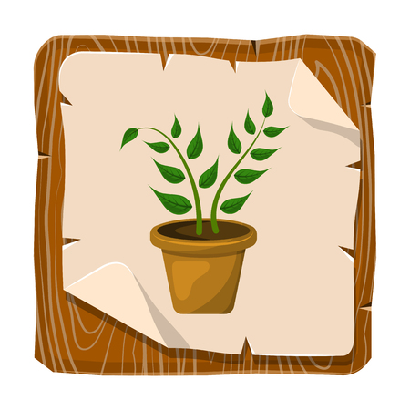 fertile: Indoor plant colorful icon. Vector illustration in cartoon style