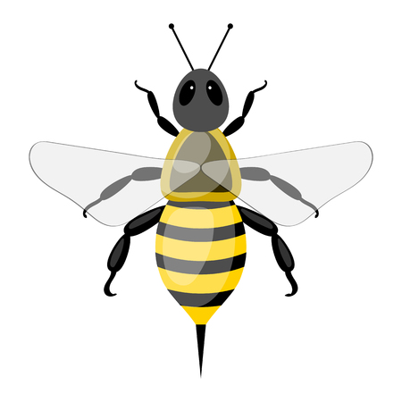 Bee colorful icon. Vector illustration in cartoon style