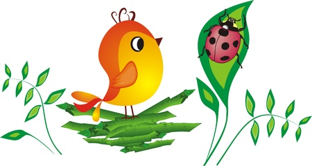 illustration  Chicken on a nest with the beetle Vector