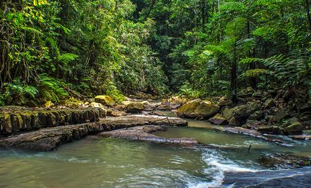 pahang: Rainforests waterfalls - Malaysia