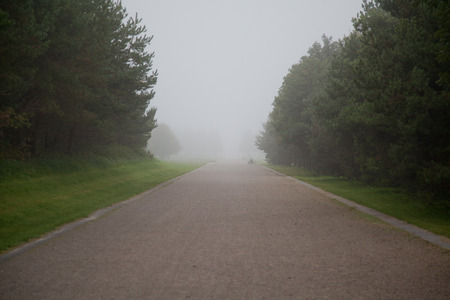 stone of destiny: way or street in fog in a park,