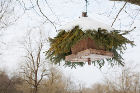 boughs: bird feeder hanging from a tree. it has a roof made of conifer boughs and is covered with snow. Stock Photo