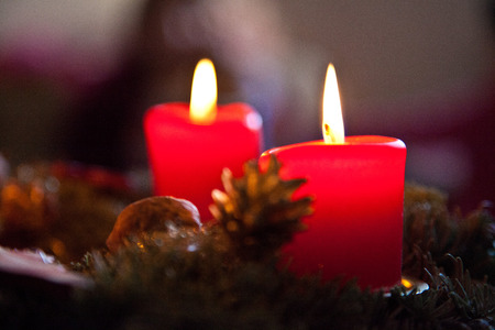 advent candles: advent candles with fir branches