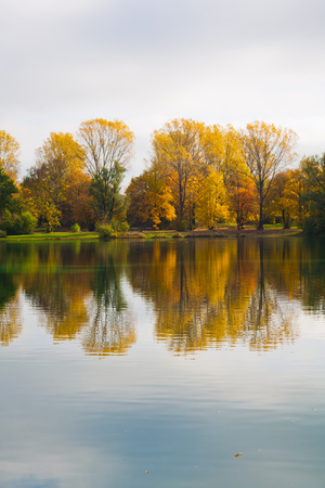 mirroring: autumn trees refelcting and mirroring in a lake