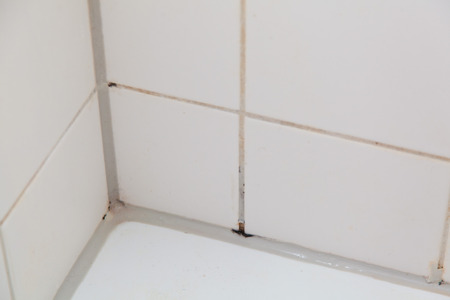bathroom tiles: Mold in the bathroom shower on the ceiling and tiles. Stock Photo