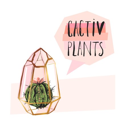 Hand drawn vector abstract succulent plant illustration with rough terrarium and succulent plant in pastel colors isolated on white bakground.Design for decoration,fashion,fabric,journaling,sign,logo Illustration