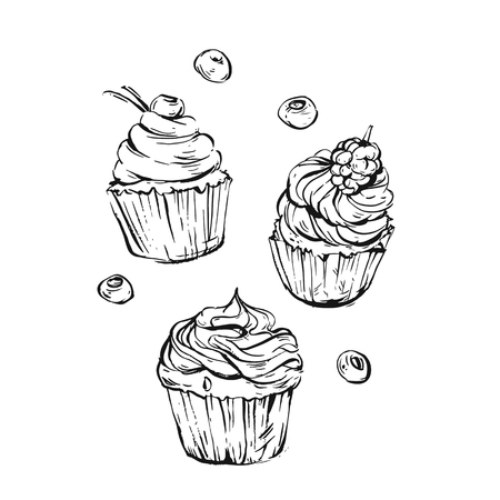 cupcake illustration: Hand drawn vector graphic sweet food design elements collection set with hand made modern graphic cupcakes with berries in black and white colors isolated.Wedding,birthday,sweet shop,logo