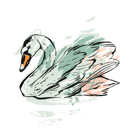 Hand drawn vector abstract ink painted textured graphic swan illustration in pastel colors isolated on white background.Vintage bird drawing illustration.Wedding,birthday,save the date,anniversary