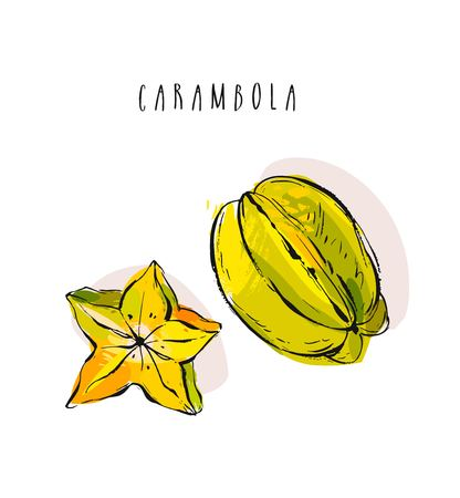 Hand drawn vector abstract exotic tropical fruit carambola collection illustration set isolated on white background.