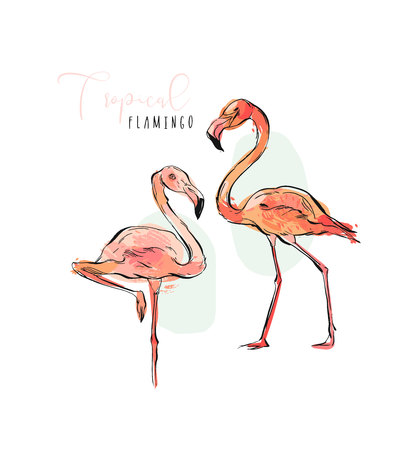 Flamingo Exotic Vector.