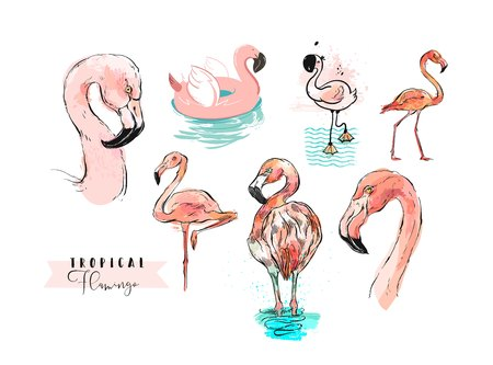 Hand drawn vector abstract summer time freehand textured tropical pink flamingo collection illustrations set in different technique isolated on white background Çizim