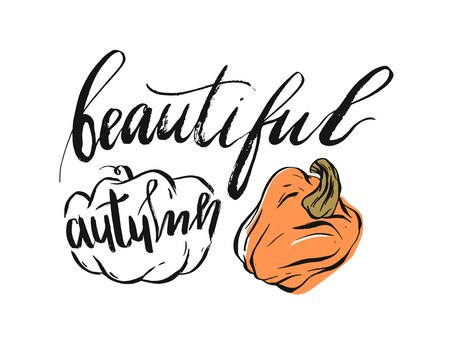 Hand drawn vector abstract autumn illustration with pumpkins and ink handwritten lettering phase beautuful autumn isolated on white background