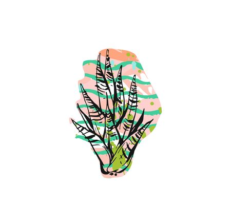 Hand drawn vector abstract graphic drawing aloe vera plant with freehand texture isolated on white background.Unique unusual hipster trendy design elements.Hand made graphic art