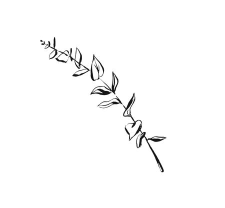 Hand drawn vector abstract artistic ink textured graphic sketch drawing illustration of eucalyptus branch plant isolated on white background