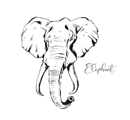 Hand getekende vector abstracte artistieke inkt getextureerde grafische schets tekening illustratie van dieren in het wild Indische olifant hoofd geïsoleerd op een witte achtergrond Vector Illustratie