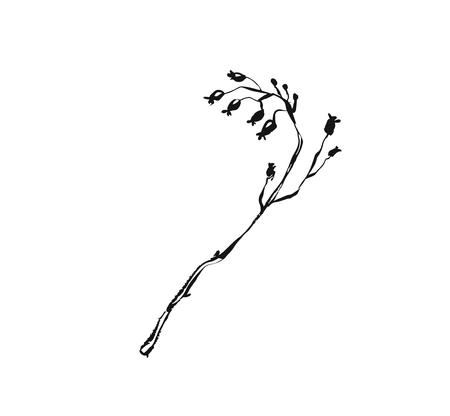Hand drawn vector abstract artistic ink textured graphic sketch drawing illustration of rustic spring flower branch plant isolated on white background Standard-Bild - 100720541