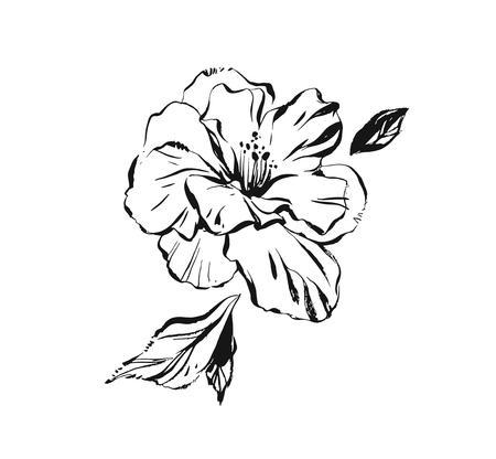 Hand gezeichnete Vektor abstrakte künstlerische Tinte strukturierte grafische Skizze Zeichnung Illustration der Hibiskus Pflanze Blume mit Blättern lokalisiert auf weißem Hintergrund Vektorgrafik