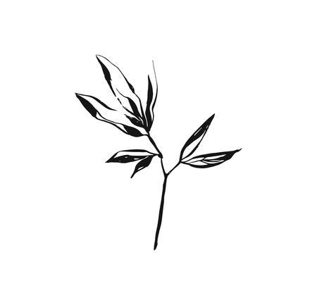Hand drawn vector abstract artistic ink textured graphic sketch drawing illustration of rustic spring flower leaves branch plant isolated on white background