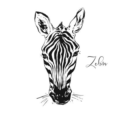 Hand drawn vector abstract artistic ink textured graphic sketch drawing illustration of wildlife zebra head isolated on white background