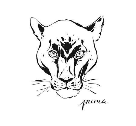 Hand drawn vector abstract artistic ink textured graphic sketch drawing illustration of wildlife puma head isolated on white background