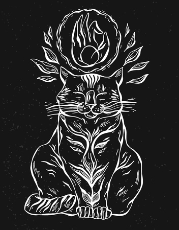 Cat print, cat graphic, cat illustration on black background. Çizim