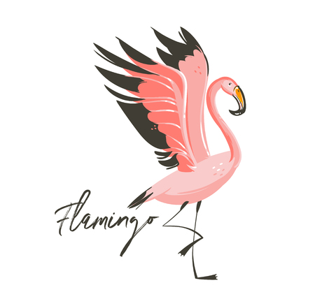 Hand drawn vector abstract cartoon summer time graphic decoration illustrations art with exotic tropical rainforest Flamingo bird isolated on white background Stock Photo