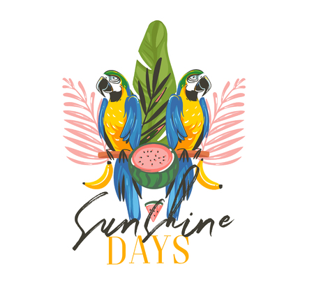 Hand drawn vector abstract cartoon summer time graphic illustrations art with exotic tropical sign with rainforest Parrot Macaw birds,watermelon and Sunshine days text isolated on white background Illustration