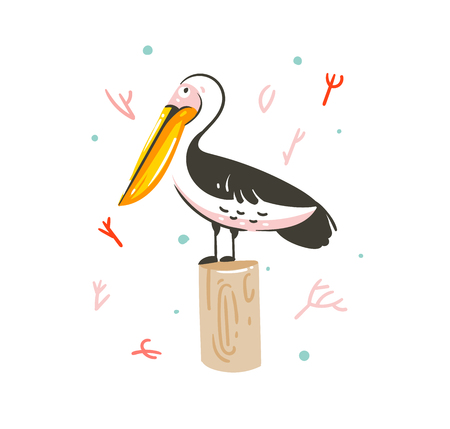 Hand drawn vector abstract cartoon summer time graphic decoration illustrations art with exotic marine pelican bird isolated on white background