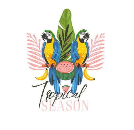 Hand drawn vector abstract cartoon summer time graphic illustrations art with exotic tropical sign with rainforest Parrot Macaw birds,watermelon and Tropical Season text isolated on white background