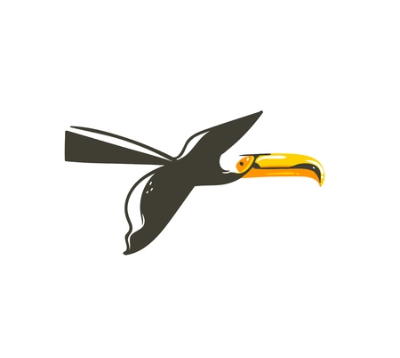 Hand drawn vector abstract cartoon summer time graphic decoration illustrations art with exotic tropical flying rainforest toucan bird isolated on white background