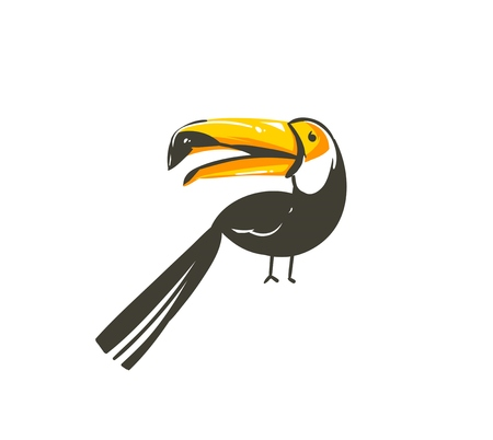Hand drawn vector abstract cartoon summer time graphic decoration illustrations art with exotic tropical rainforest toucan bird isolated on white background