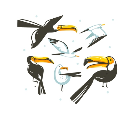 Hand drawn vector abstract cartoon summer time graphic decoration illustrations collection set art with exotic tropical rainforest toucan birds and sea gulls isolated on white background. Illustration