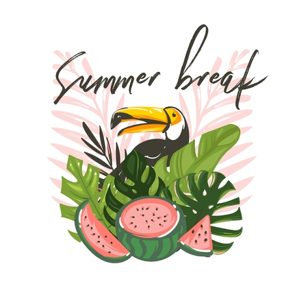Hand drawn vector abstract cartoon summer time graphic illustrations art with exotic tropical sign with rainforest toucan bird,watermelon and Summer break text isolated on white background. Standard-Bild - 113557913