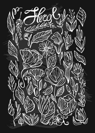 Hand drawn vector lined indoor floral plants line icons set and design elements in sketch.Vintage decorative plants and flowers collection.Herbs,leaves and Wild Flowers.