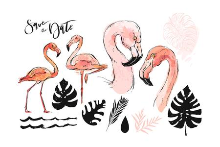 Hand drawn vector abstract graphic freehand textured sketch pink flamingo and tropical palm leaves drawing illustration collection set with modern decoration elements isolated on white background Stok Fotoğraf - 117257266