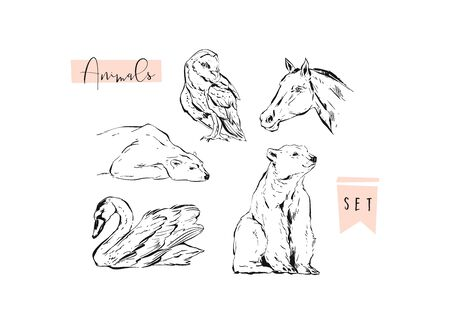 Hand drawn vector abstract graphic animals set collection of swan,polar bear,horse and owl ink brush painted isolated on white background.