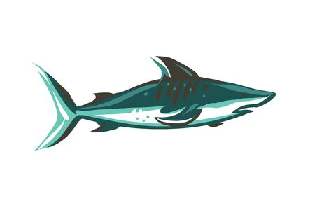 Hand drawn vector abstract stock flat graphic illustration with underwater swimming shark drawing isolated on white color background