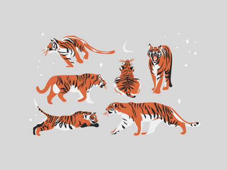 Hand drawn vector abstract stock graphic illustration collection set with beauty cute celestial trendy wildlife tigers,moon and stars isolated on white background.Magic Boho clipart elements