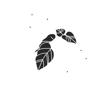 Hand drawn vector abstract stock flat graphic illustration with   element,magic flower leaves branch silhouette in simple style for branding,isolated on color background