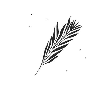 Hand drawn vector abstract stock flat graphic illustration with  element of tropical, black exotic palm leaves silhouette art in simple style for branding, isolated on white background 일러스트