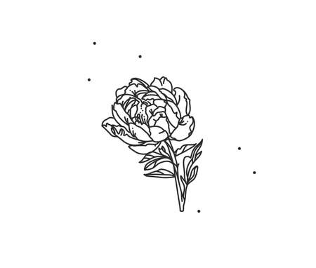 Hand drawn vector abstract stock flat graphic illustration with logo element of line flower art of peony in simple style for branding,isolated on white background.Sacred magic boho feminine concept
