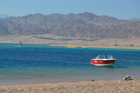 The beauty of nature in Sinai... Editorial