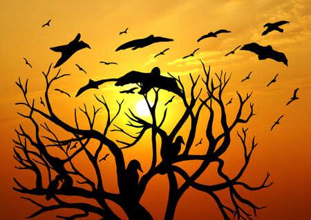 Dead Tree Silhouette photo