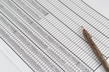 statistician: Souvenir pencil on the table with numbers Stock Photo